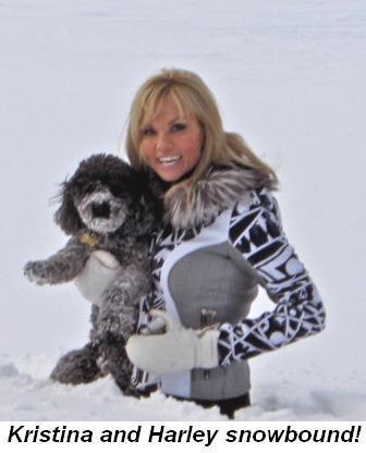 Blog 8 - Kristina and Harley snowbound
