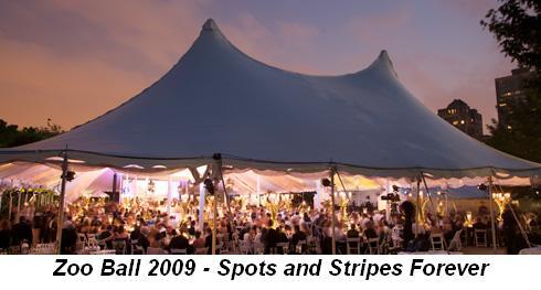 Blog 1 - Zoo Ball 2009—Spots & Stripes Forever