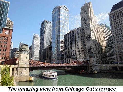 Blog 5 - One of the views from Chicago Cut's terrace
