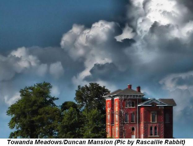 Blog 1 - Towanda Meadows-Duncan Mansion (Pic courtesy of Rascaille Rabbit)