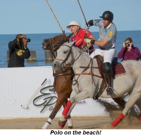 Blog 3 - Polo on the beach