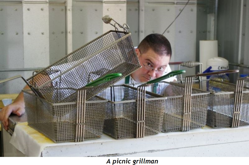 6 - A picnic grillman
