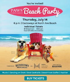 PAWS beach party 2016