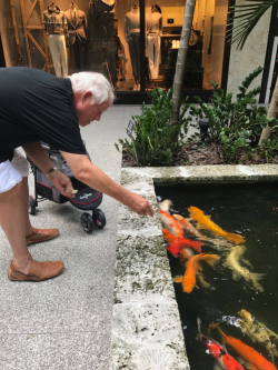 Chuck playing with the koi at Bal Harbour