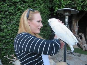 image from http://s3.amazonaws.com/hires.aviary.com/k/mr6i2hifk4wxt1dp/14090305/c266f790-17cc-4c7f-b099-6389625aeafa.png