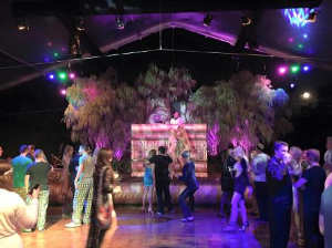 Enchanted Forest theme for MND party 2015