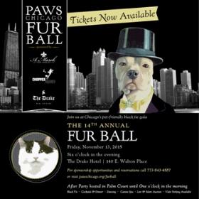 Fur Ball 2015 Evite