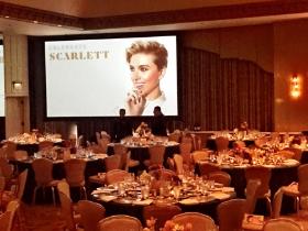 Gene Siskel Film Center celebrates Scarlett at the Ritz-Carlton Chicago