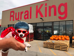 "Rooney ""Rules"" Jordan conquers Rural King in Waterloo, IL"