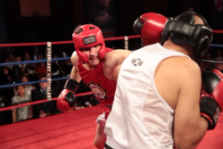 Live boxing ringside