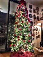 Oh, Christmas tree, Oh, Christmas tree!