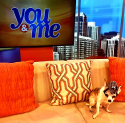 Rooney co-hosting You & Me