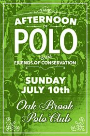 Polo invite