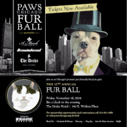 PAWS Fur Ball on November 18
