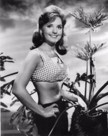 """Dawn Wells aka MaryAnn in """"Gilligan's Island""""."""