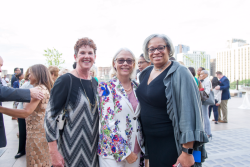 Kathy Ryg (former VFIC board president and Illinois State Representative), Beth Coulson (VFIC board member and former Illinois State Representative), Deborah Graham (former Illinois State Representative and Alderman)