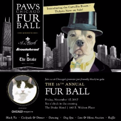 PAWS Fur Ball 2017