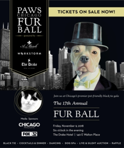 PAWS Fur Ball at the Drake Hotel on November 9