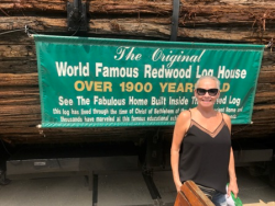 Over 1900 year-old redwood log house