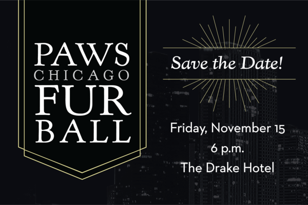 Csm_Furball_Save_the_Date_19-Left_fc079b6f11