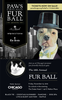 FurBall_Chicago-Mag_Ad_VIP-List_400x650_2019_r12