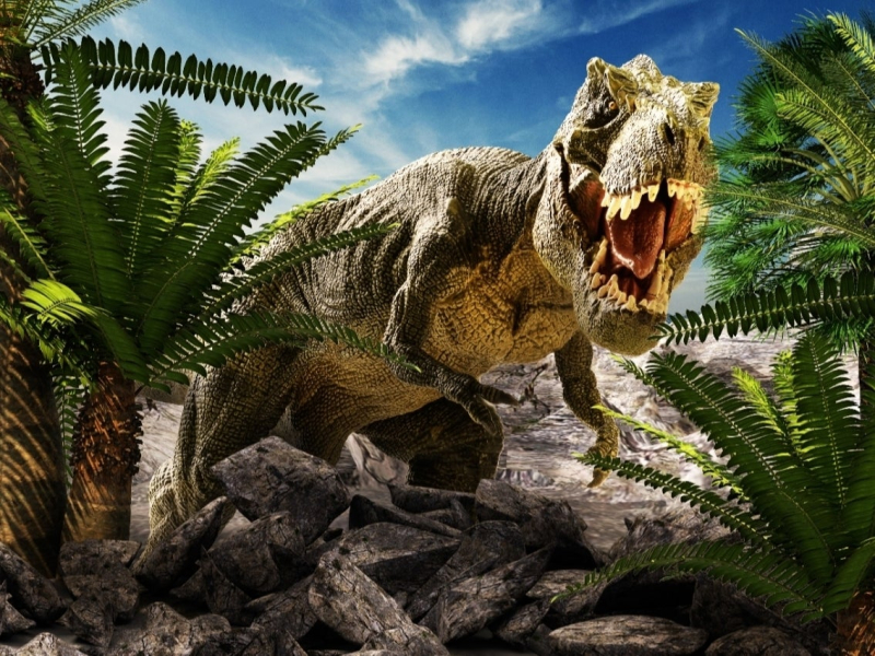 Shutterstock-dinosaur___26130502688