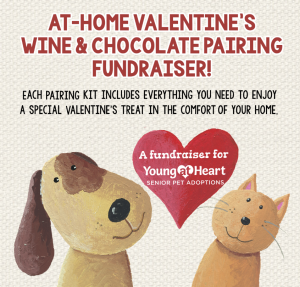 Wine and chcolate pairing fundraiser