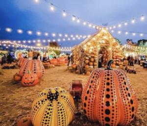 Jacks pumpkin popup